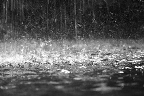 Me rain medium
